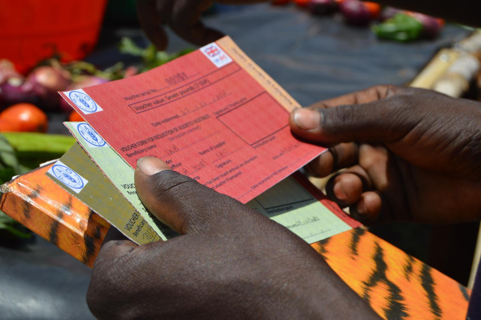 FAO South Sudan and DFID voucher scheme in Nimule. Credit: FAO Emergencies