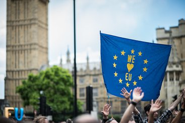 Brexit protest, 2016. Photo: Garon S, CC BY-NC-ND 2.0