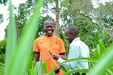Farmers using AgriTech platform in Uganda