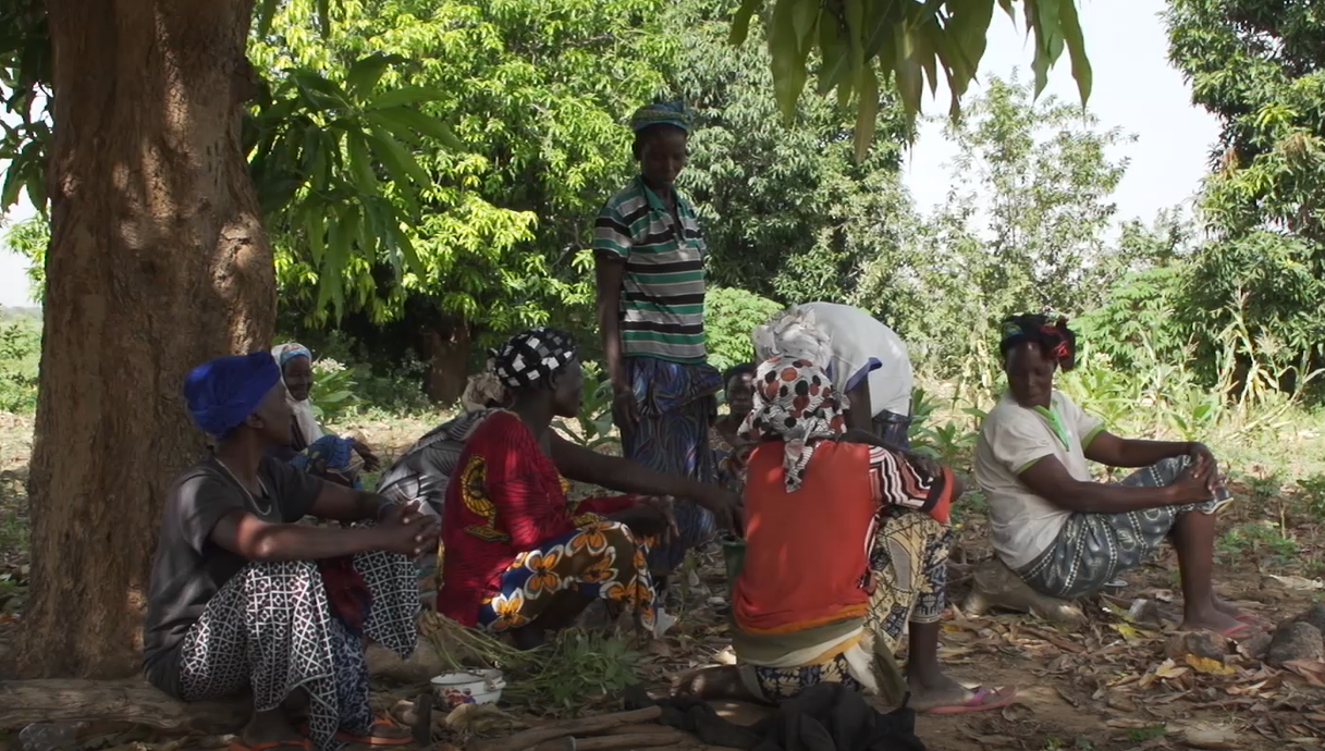 """Rural community in Burkina Faso (still from PRISE film). Photo: PRISE CC-BY-NC-ND"""""""
