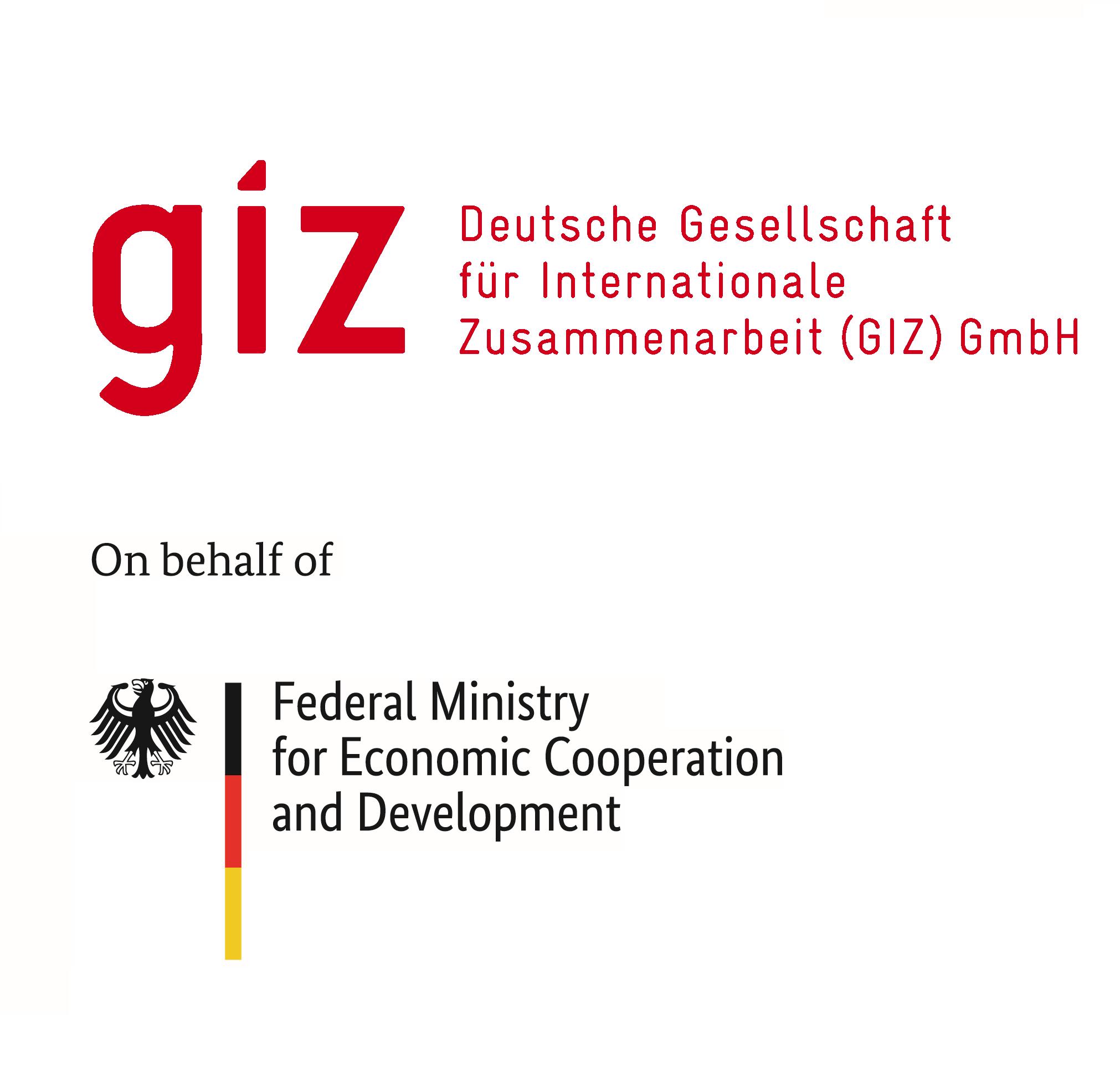 giz_bmz_logo.png