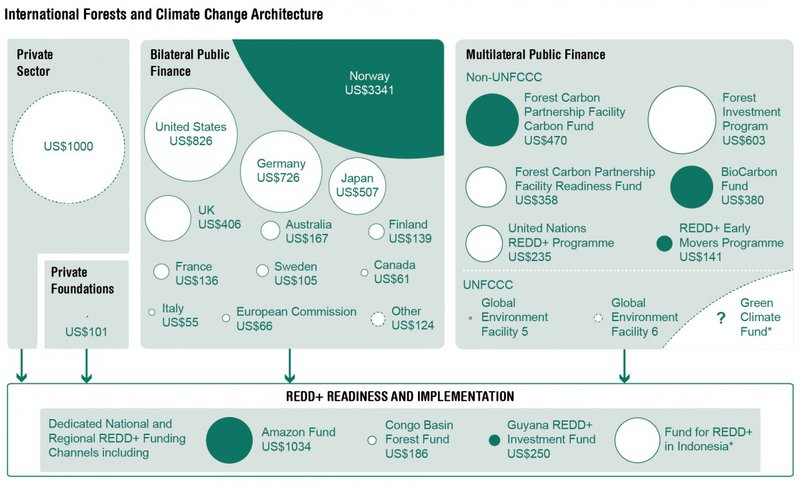 REDD+ international forests and climate change architecture