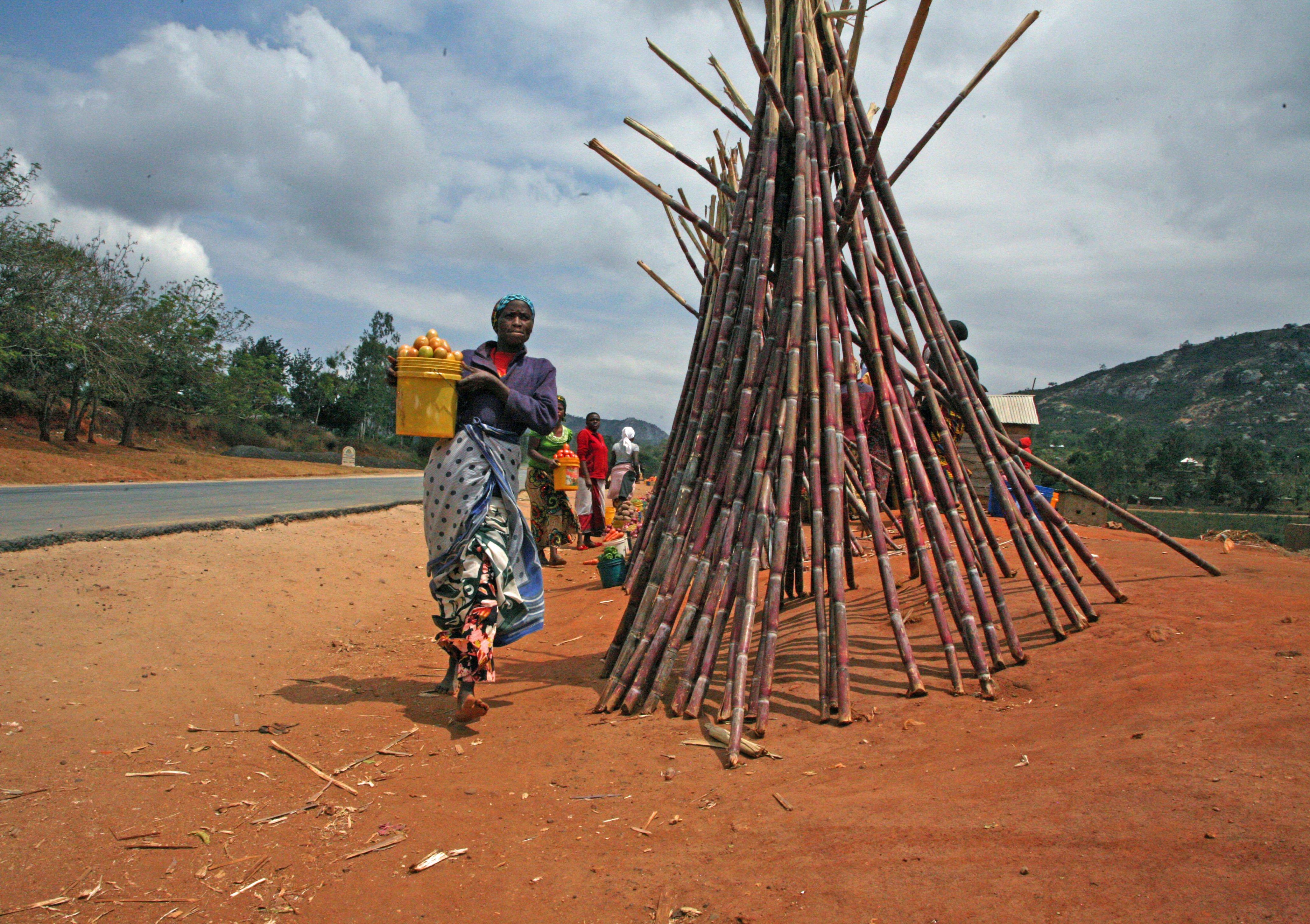 Woman selling sugar cane in Morogoro, Tanzania. Photo: PRISE/Rajeshree Sisodia