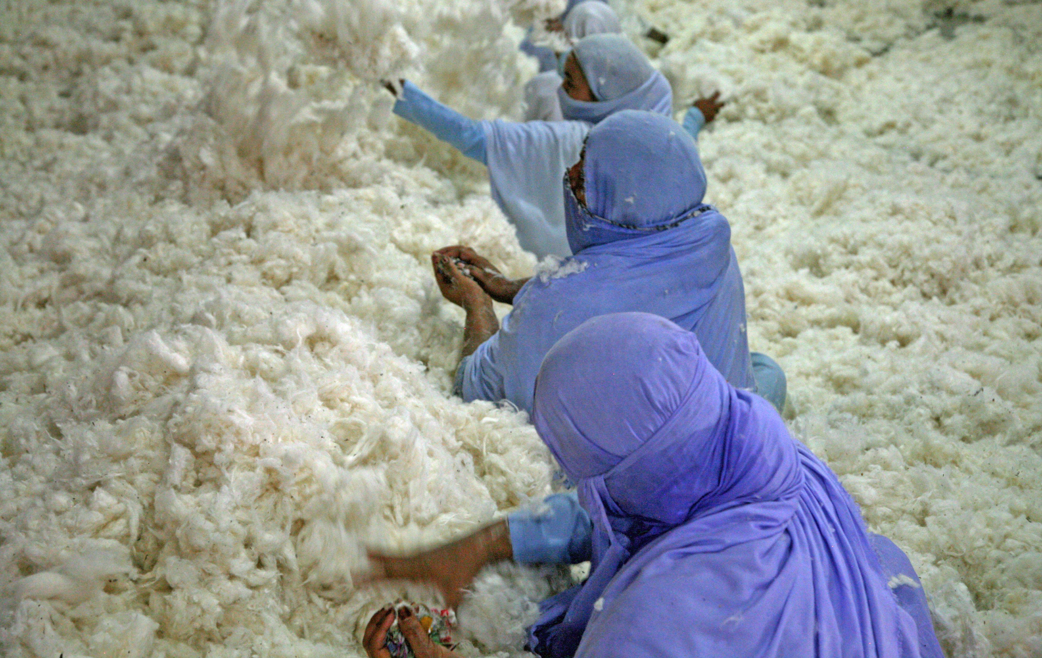 Women decontaminating cotton at J. K. Spinning Mills, near Faisalabad, Punjab, Pakistan. Photo: PRISE/Rajeshree Sisodia